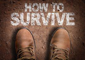Top 5 Survival-Games der Redaktion